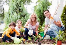 Zajmij się ogrodem – dla zdrowia!