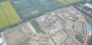Holendrzy rozpoczynają olbrzymią inwestycję szklarniową w Chinach. Docelowo ma tam powstać 100-ha kompleks uprawowy