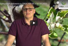 Komunikat sadowniczy PROCAM 05 z 16.04.2020