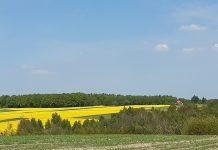 2021 – największe wyzwania dla rolnictwa
