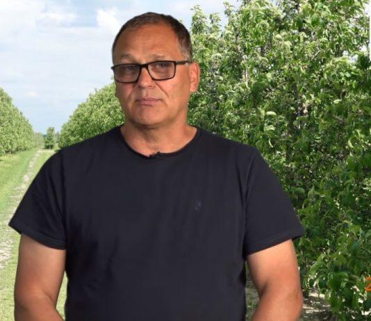 Komunikat sadowniczy PROCAM 11 z 27.05.2020