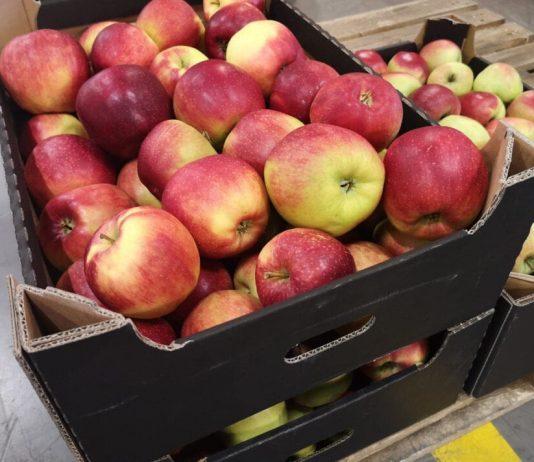 Kończą się polskie jabłka, zaczyna się import