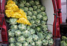 Rybitwy – notowania warzyw – 8 lipca, 11:00. Kukurydza cukrowa w sprzedaży