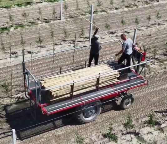 Samobieżna platforma sadownicza z Ursusa C-330 [Video]