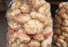 Ziemniaki w górę – notowania cenowe na Rynku Hurtowego Bronisze 13.07.2020