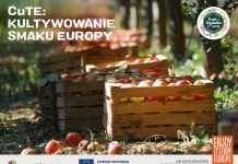 Kultywowanie smaku Europy
