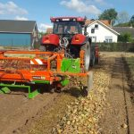 Zbiór cebuli – ścinacze szczypioru i kopaczki