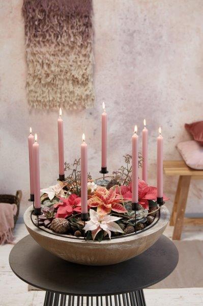 poinsecja dekoracje