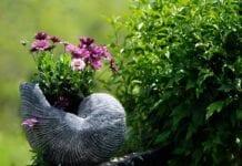 Glebogryzarka do ogrodu – kiedy się przydaje i jak ją wybrać?