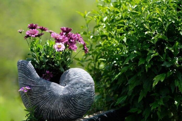 Glebogryzarka do ogrodu