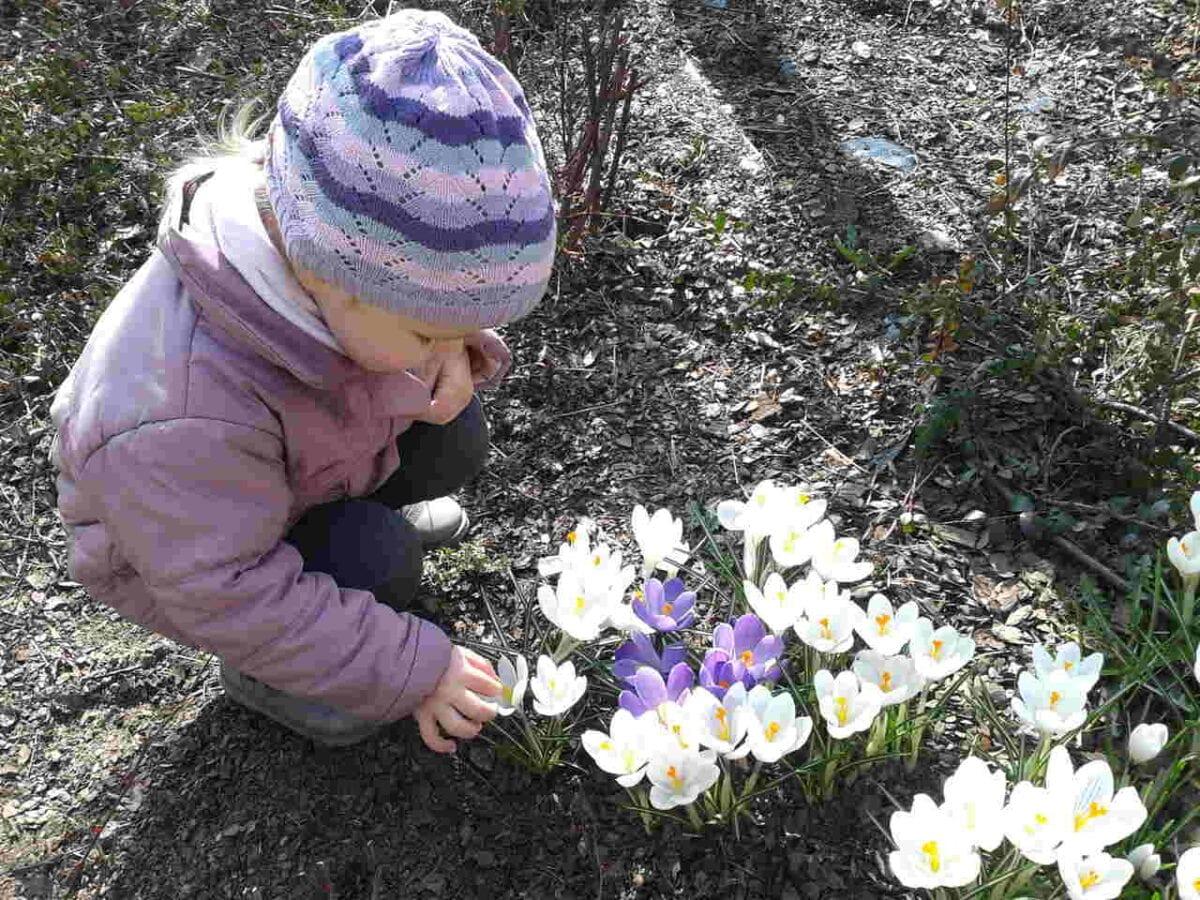 Dziecko w ogrodzie1