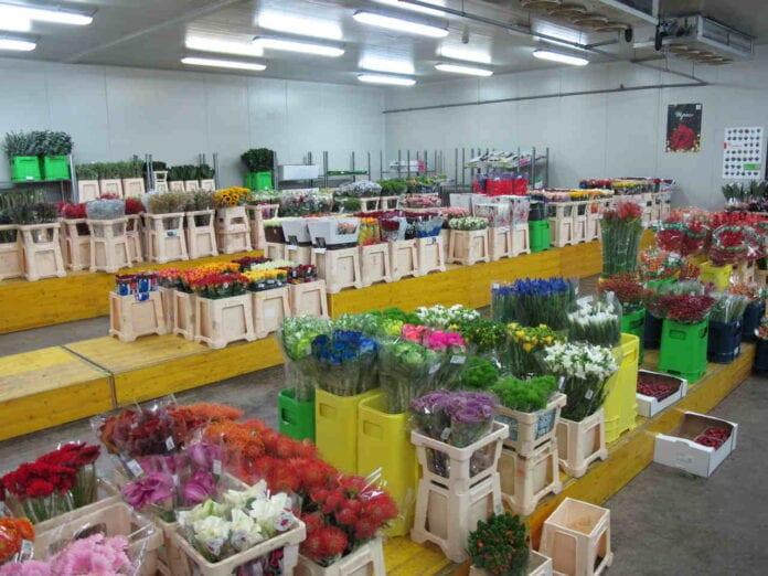 Kwwiaty cięte handel