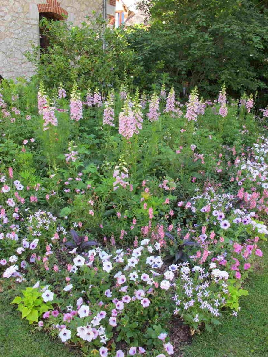 Ogród biało-różowy