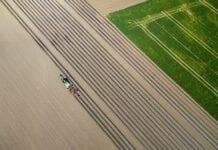 ecovio® M – rozwiązanie dla biodegradowalnych folii ściółkujących – niezawodnych w każdym gospodarstwie