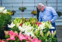 FlowerTrials® – tradycyjnie w 24. tygodniu roku?