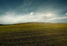 Polityka handlowa a emisja dwutlenku węgla w rolnictwie