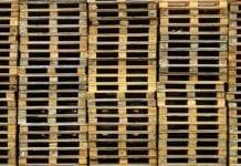 Drewniane materiały opakowaniowe – zmiany przy imporcie z Chin, Indii i Białorusi