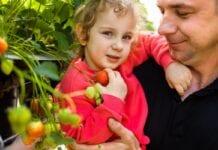 Czy Polacy zwracają uwagę na to, żeby dieta wzmacniała odporność?