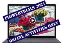 Tegoroczna edycja FlowerTrials® odwołana