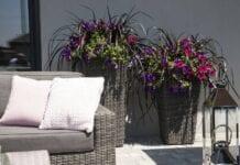 Donice na balkon i taras – jak wybrać i na co zwracać uwagę przed zakupem?