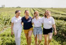Rośnie liczba producentów, którzy zapraszają na plantacje jagody kamczackiej