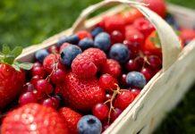 Międzynarodowy Dzień Owoców oraz Dzień Polskiej Borówki