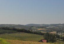 Zielony Ład dla rodzinnych gospodarstw rolnych