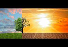 Zmiany klimatu a reakcja UE
