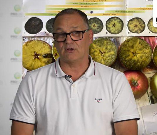 Komunikat sadowniczy i jagodowy PROCAM z 23.09.2021